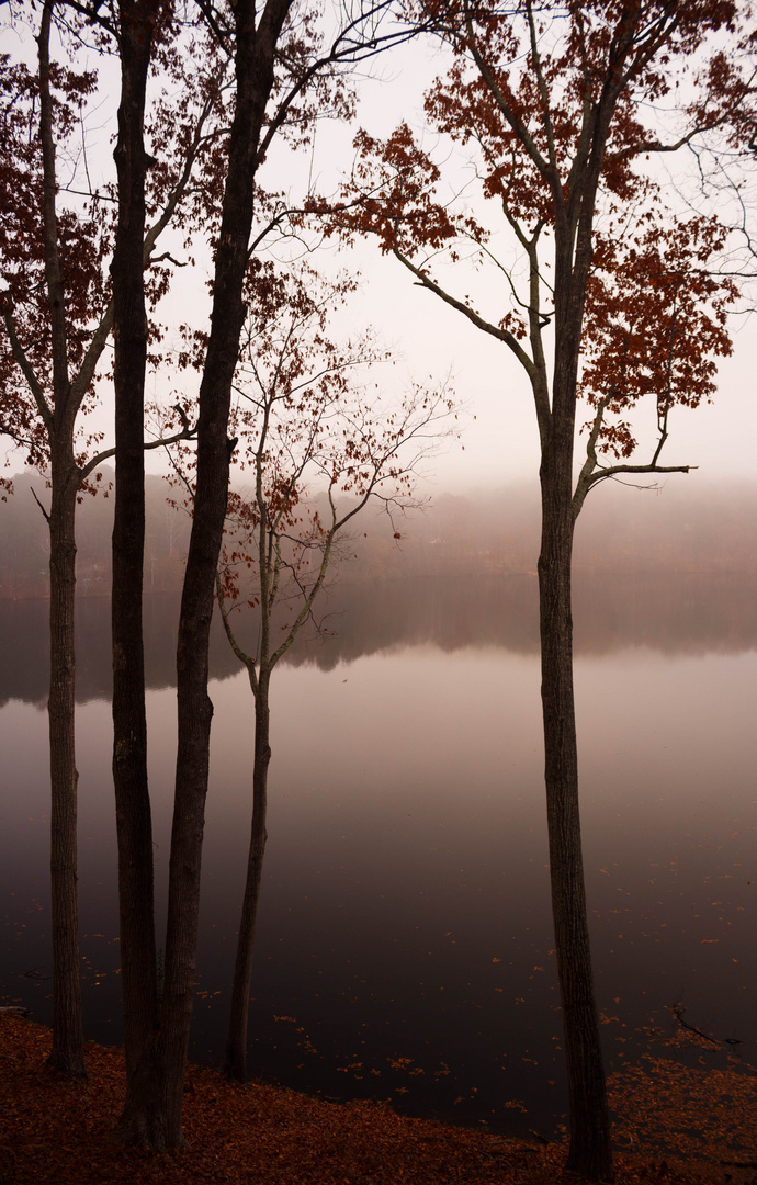 Morgennebel am Stone Mountain Lake