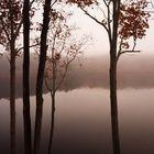 Morgennebel am Stone Mountain Lake