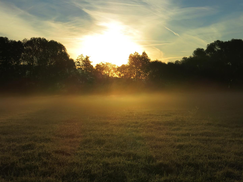 Morgennebel an der Losse -4-