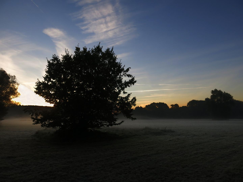 Morgennebel an der Losse