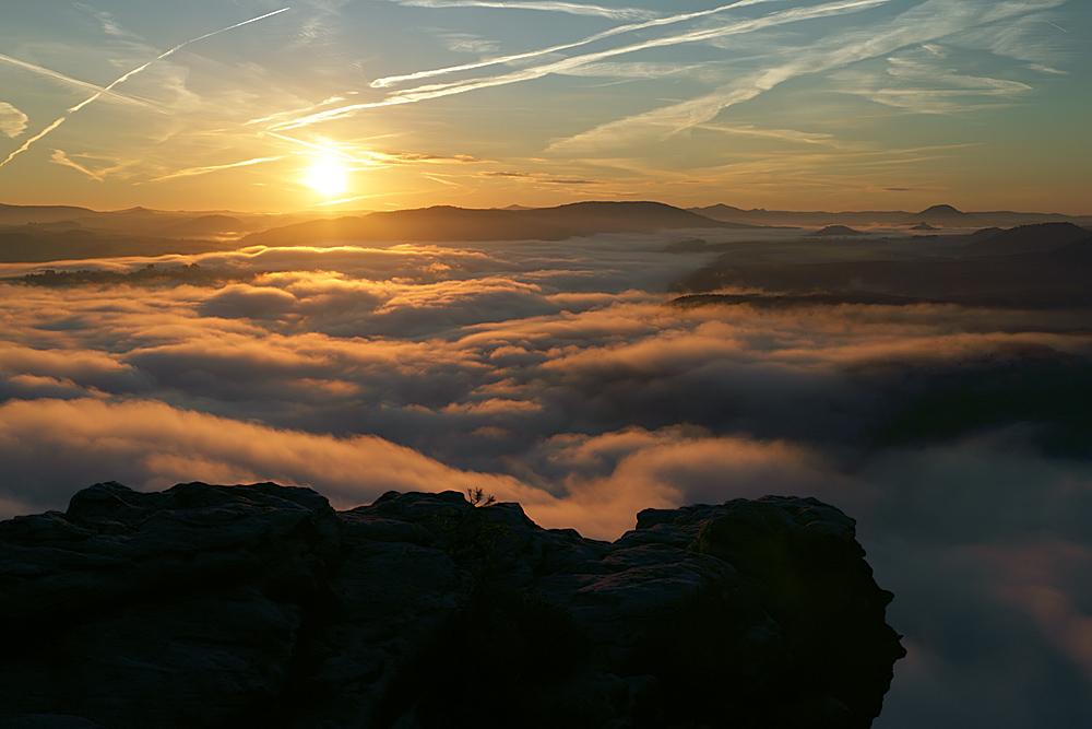 Morgennebel im Elbtal