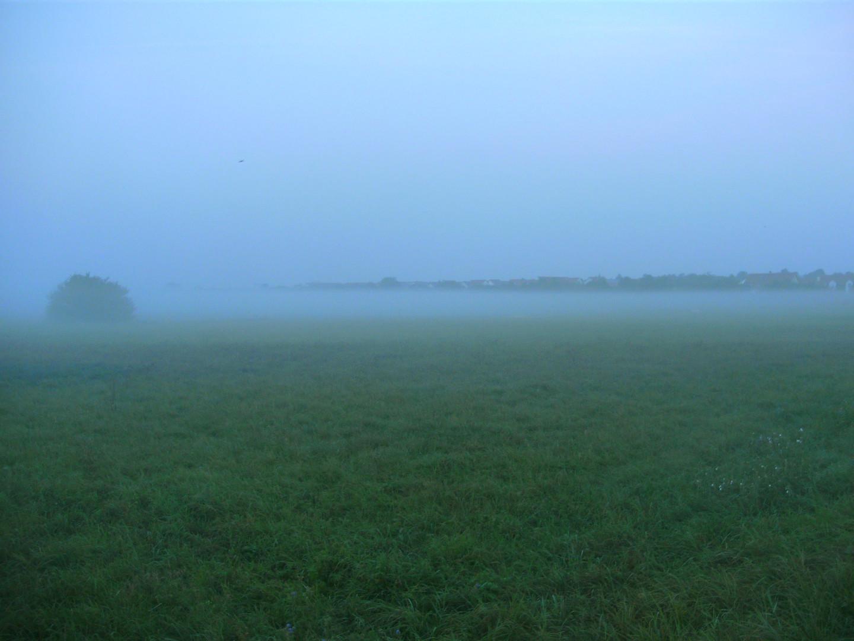 Morgennebel im Frühherbst 4