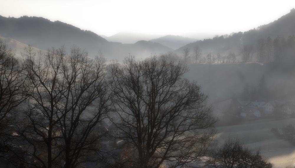Morgennebel im Kleinen Erlauftal