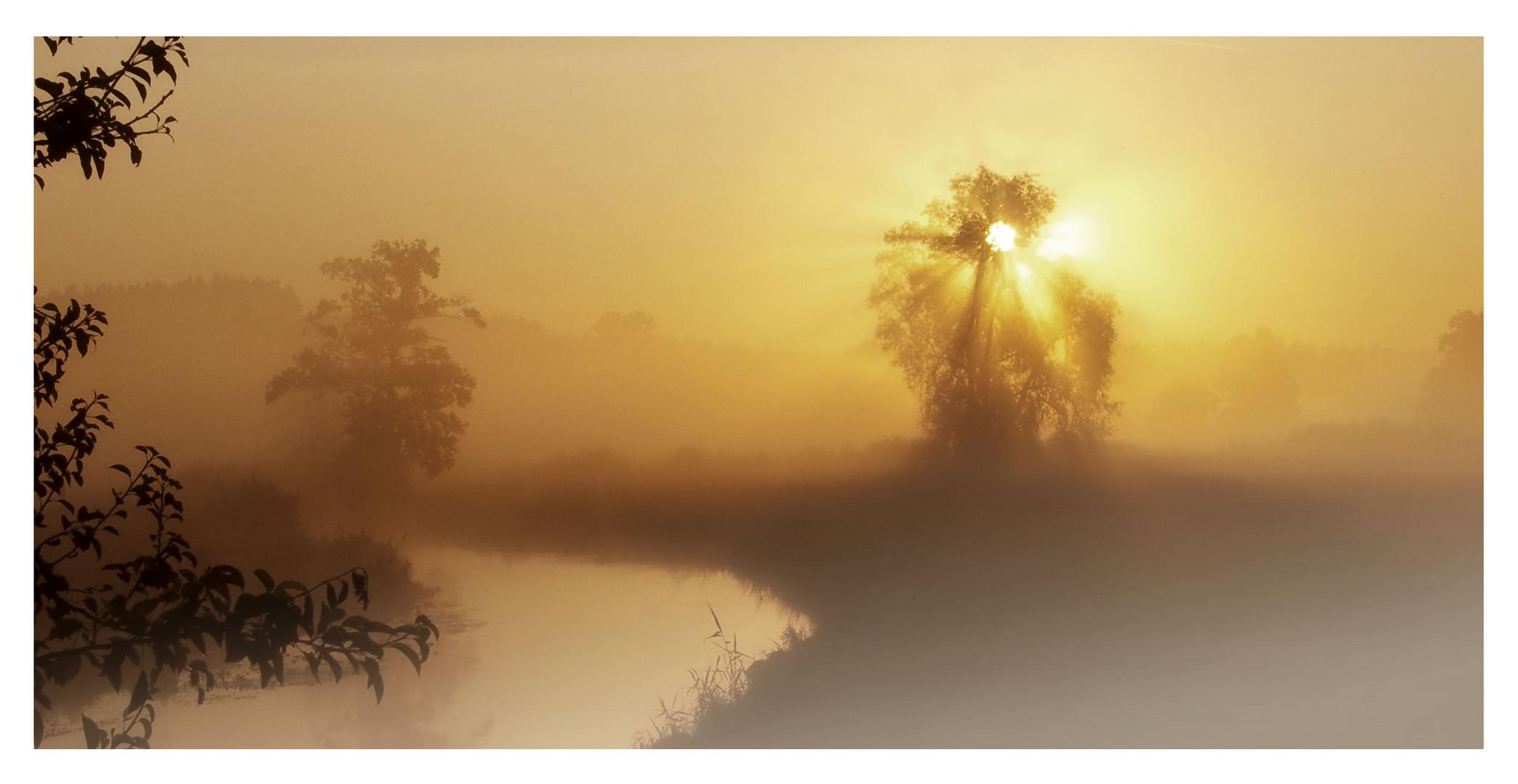 Morgennebel im kleinen Vilstal