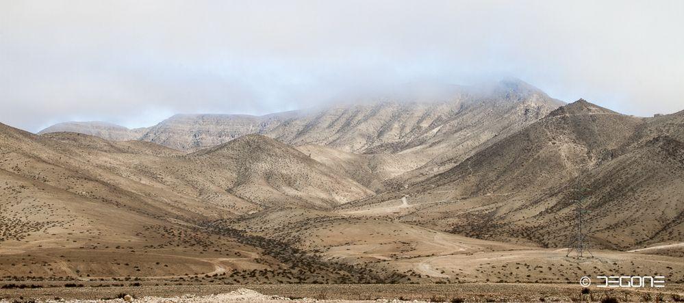 Morgennebel in der Atacama