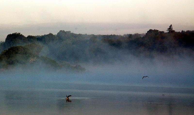 Morgennebel über dem Schlossgraben