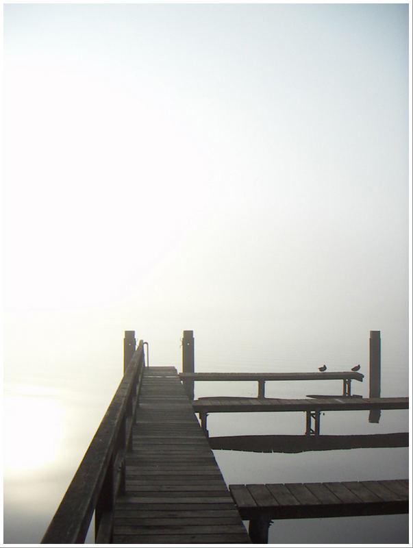 Morgennebel über dem See