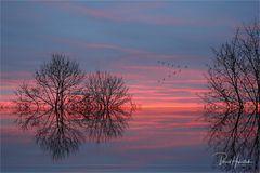 Morgenröte am linken Niederrhein ....