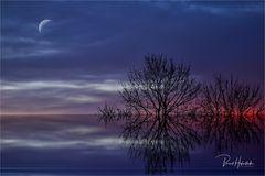 Morgenröte ...... kurz vor heilig Abend