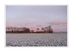 Morgenrot 23.03.08 at 06:44:02 (Polderland nordlich von Oranjedijk)