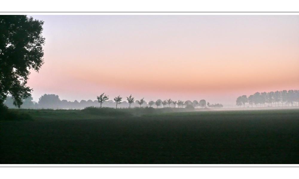 Morgenrot am Oranjedijke (a fine way to start a day)
