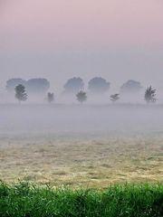 Morgenrot im Nebel