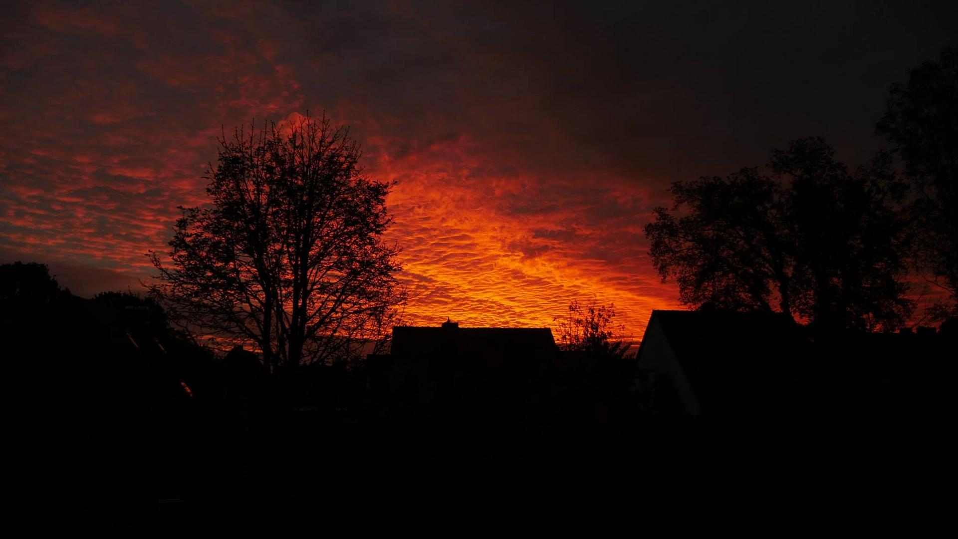 Morgenrot ist auch...