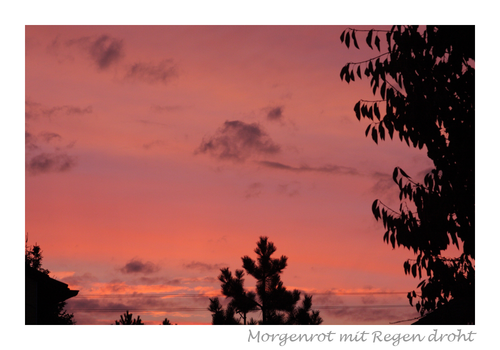 Morgenrot mit Regen droht