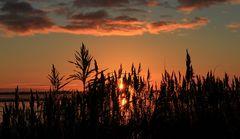 Morgenrot über dem Wattenmeer 2