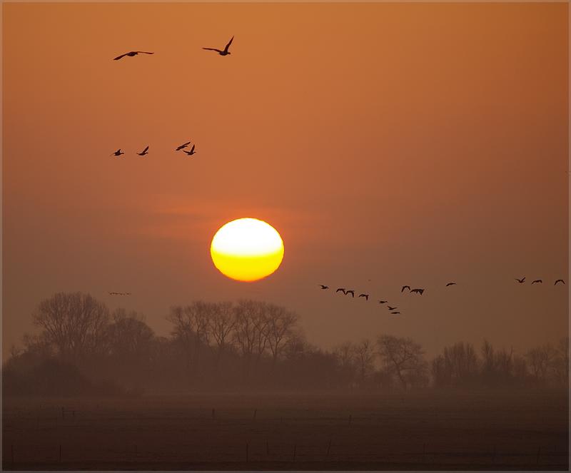 Morgens 6.30 in Ostfriesland