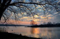 Morgens am Lac de Madine