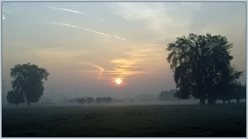 Morgens am Niederrhein