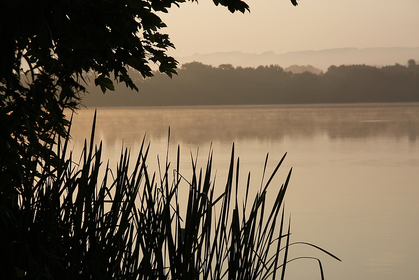 Morgens am See