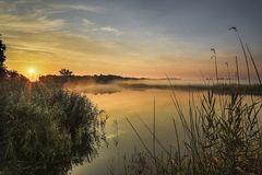 Morgens am See [Matin au bord du lac]