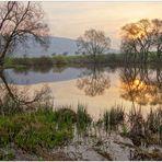 morgens am See (por la mañana en el lago)