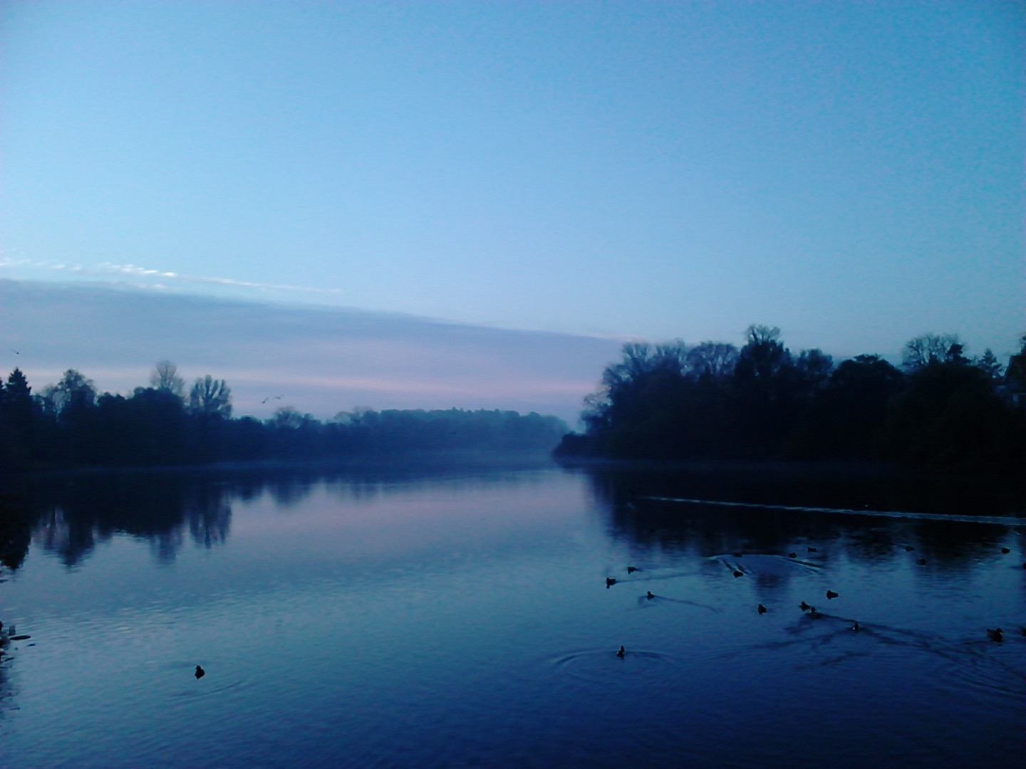 Morgens am See2
