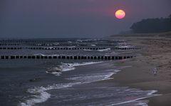 Morgens am Strand...