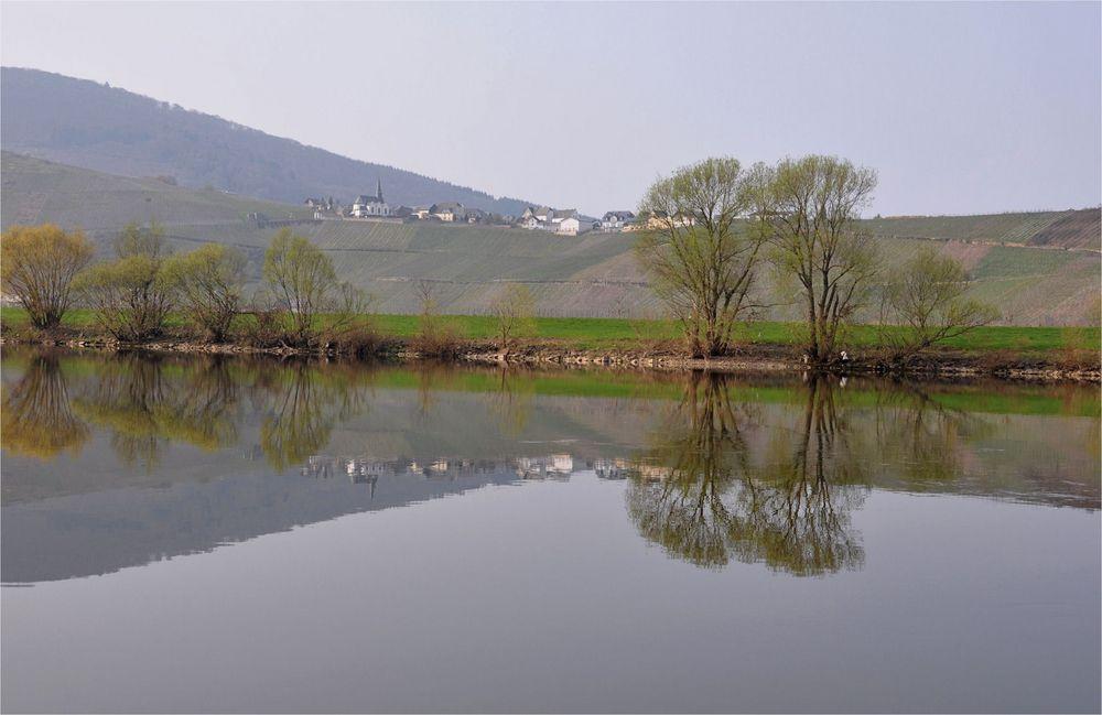 morgens am Ufer der Mosel -2-
