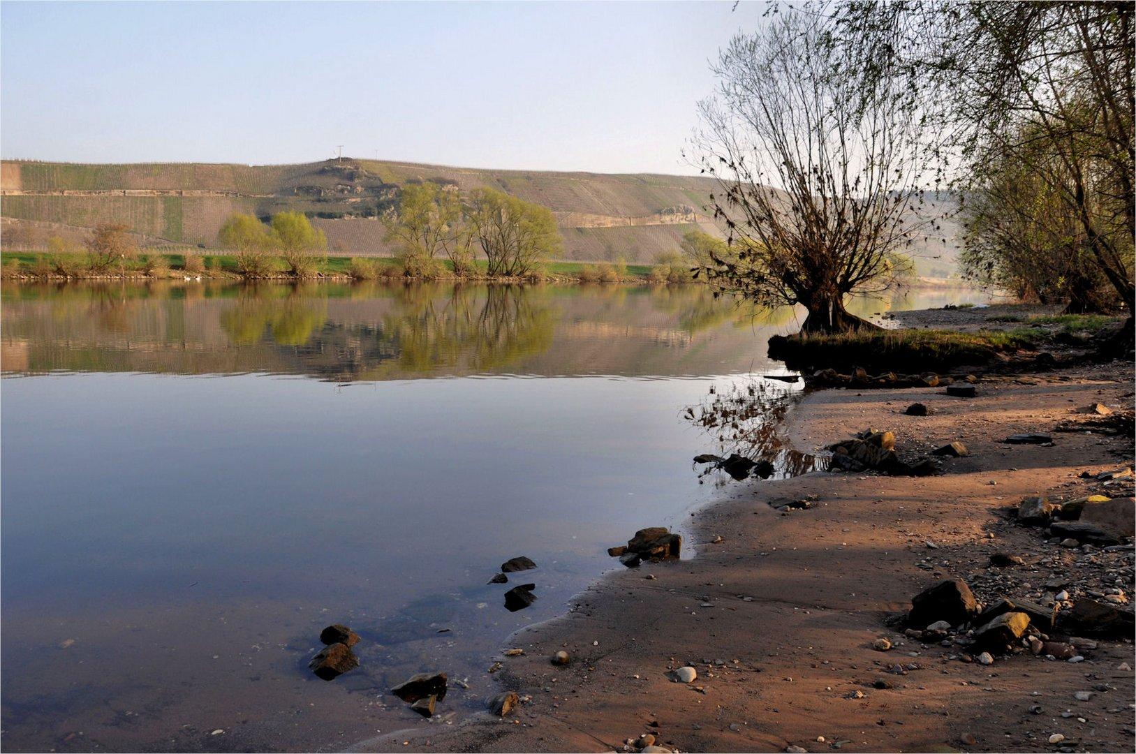 morgens am Ufer der Mosel,