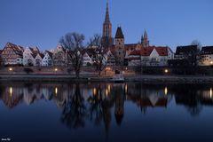 Morgens an der Donau