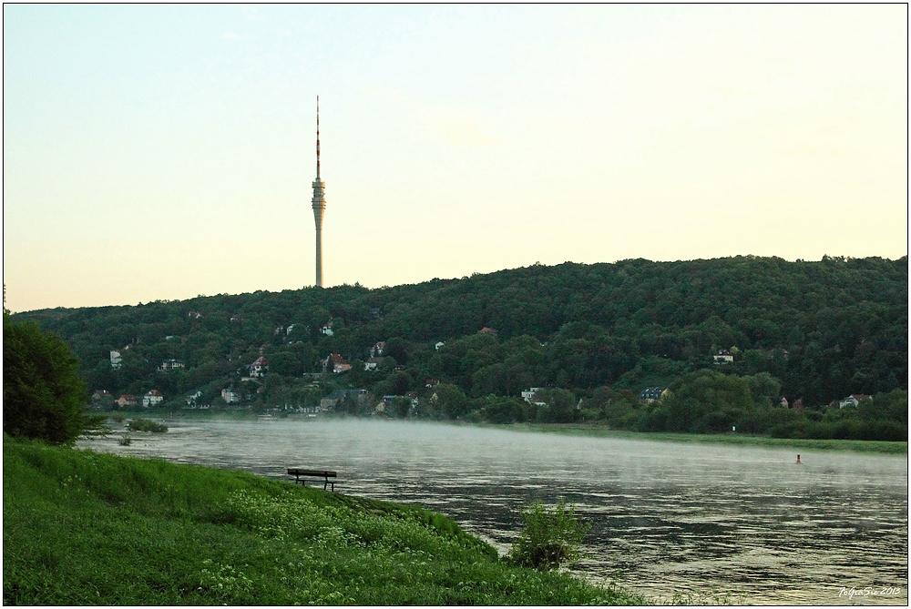 Morgens an der Elbe (6)