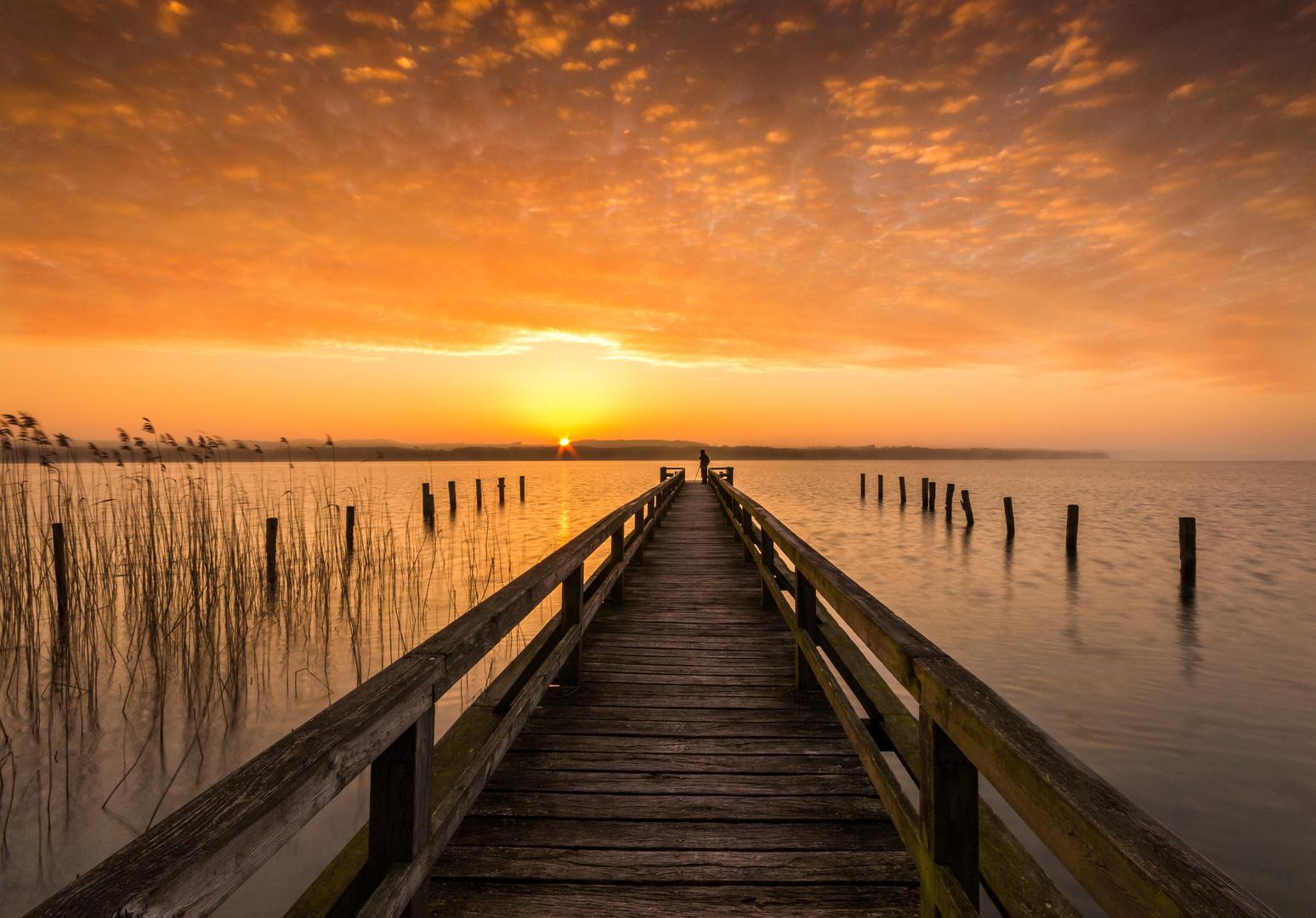Morgens auf dem Steg am Ratzeburger See