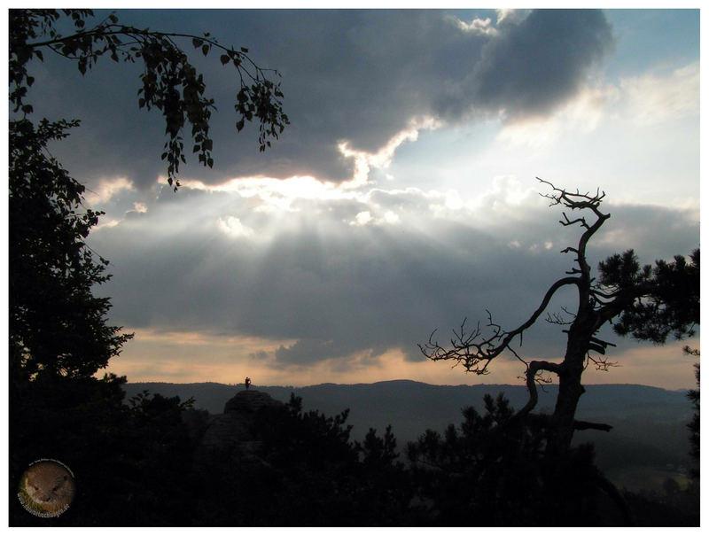 morgens auf der Bastei