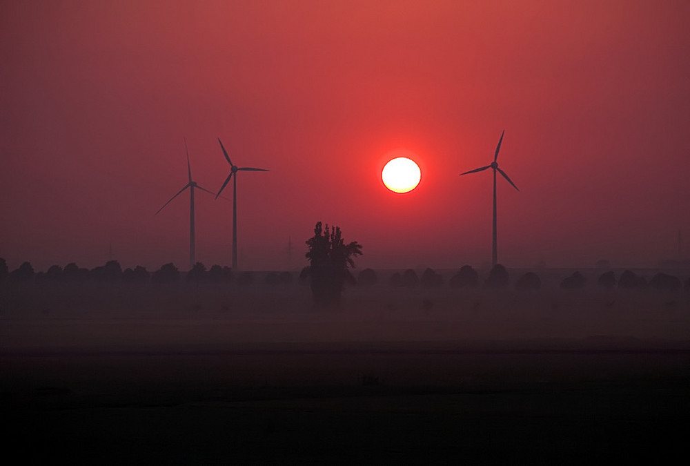 Morgens bei Harsum