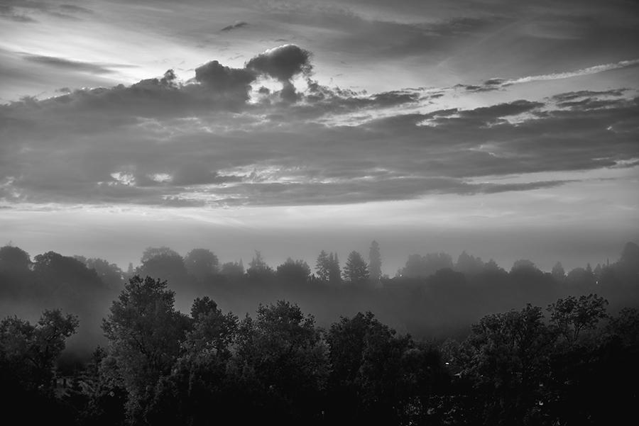 Morgens bei noch leichtem Nebel....