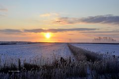Morgens freu , half negen , achtein Grod kold