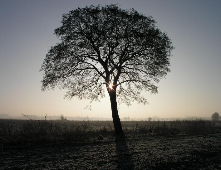 morgens, halb 10, in deutschland