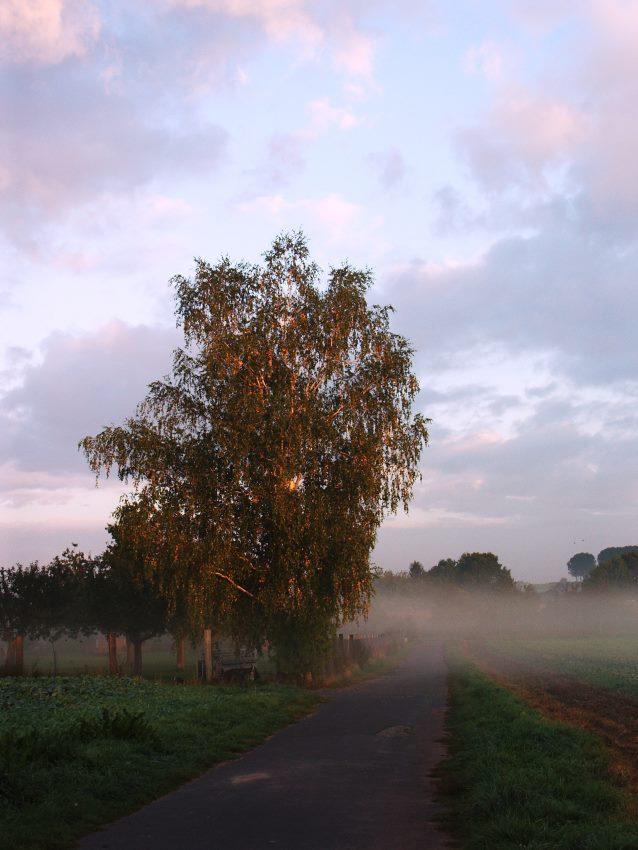 Morgens halb 8 in Hessen