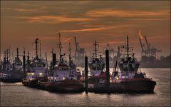 * Morgens im Hafen V * reloaded