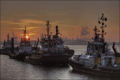 * Morgens im Hafen VI *