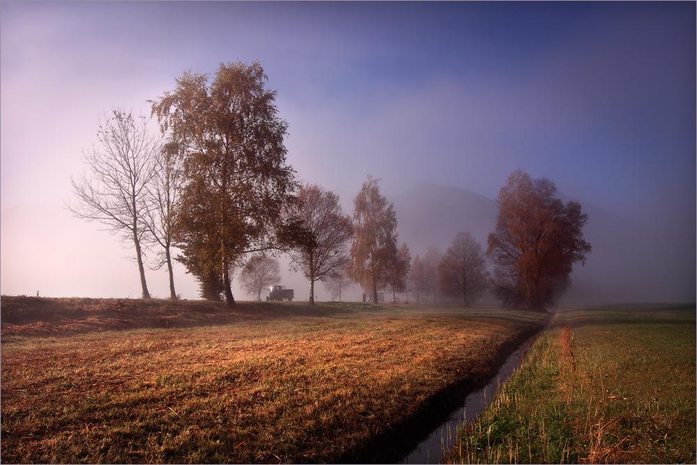 Morgens in den Feldern unterwegs