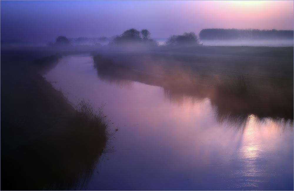 Morgens in den Poldern