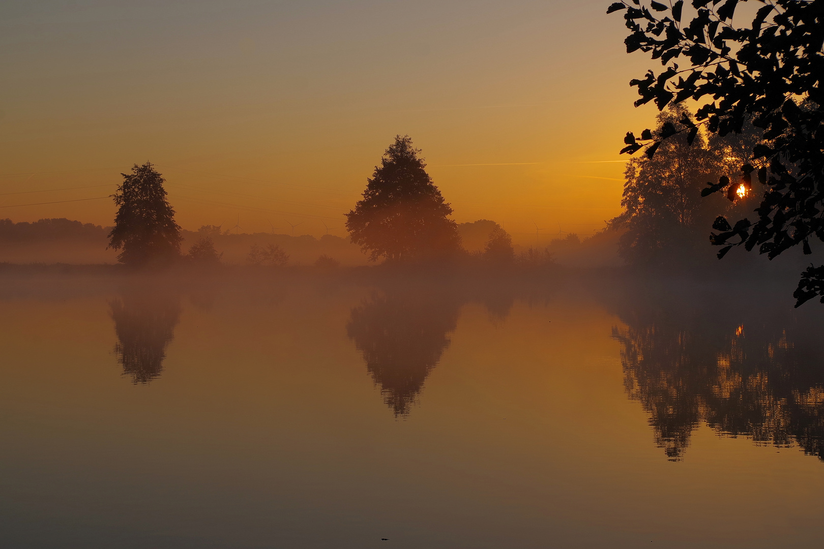 morgens in Moor