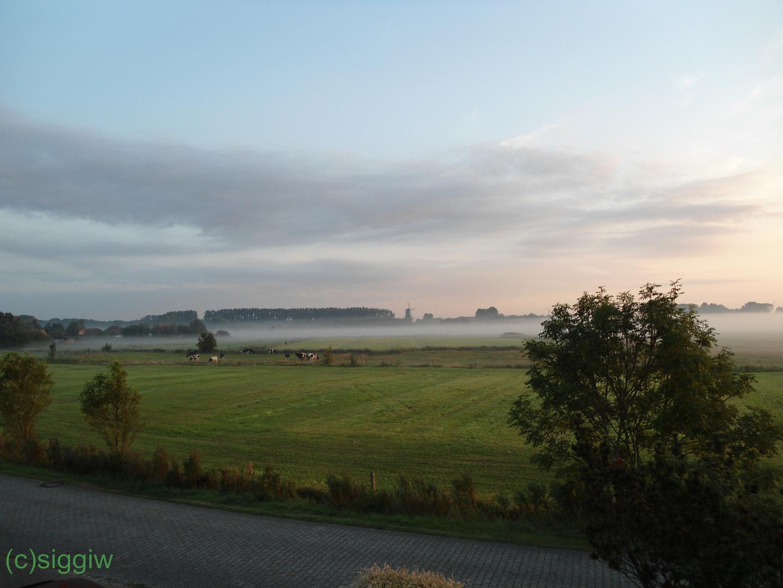 Morgens in Ostfriesland.....