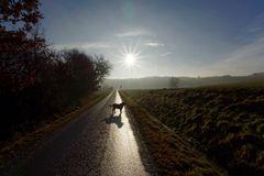 Morgens mit Hund unterwegs 9
