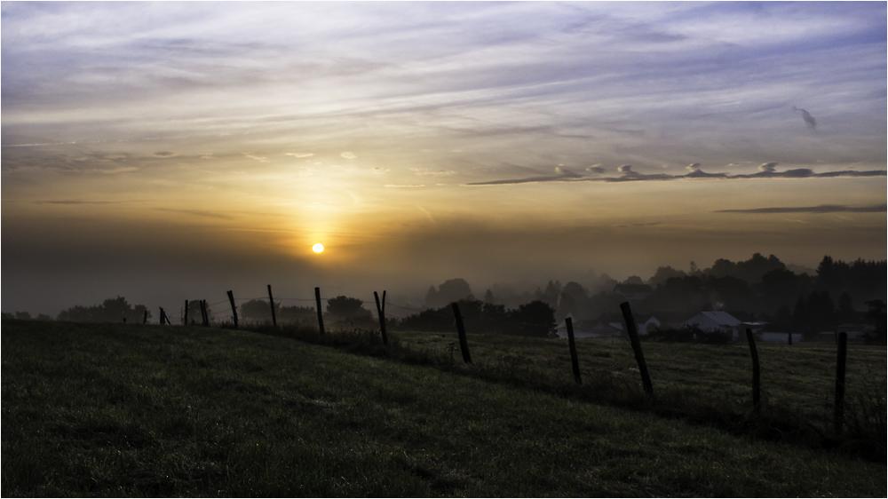 morgens über dem Nebel