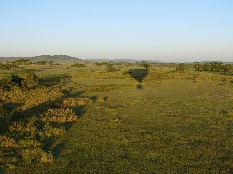 Morgens über die Serengeti