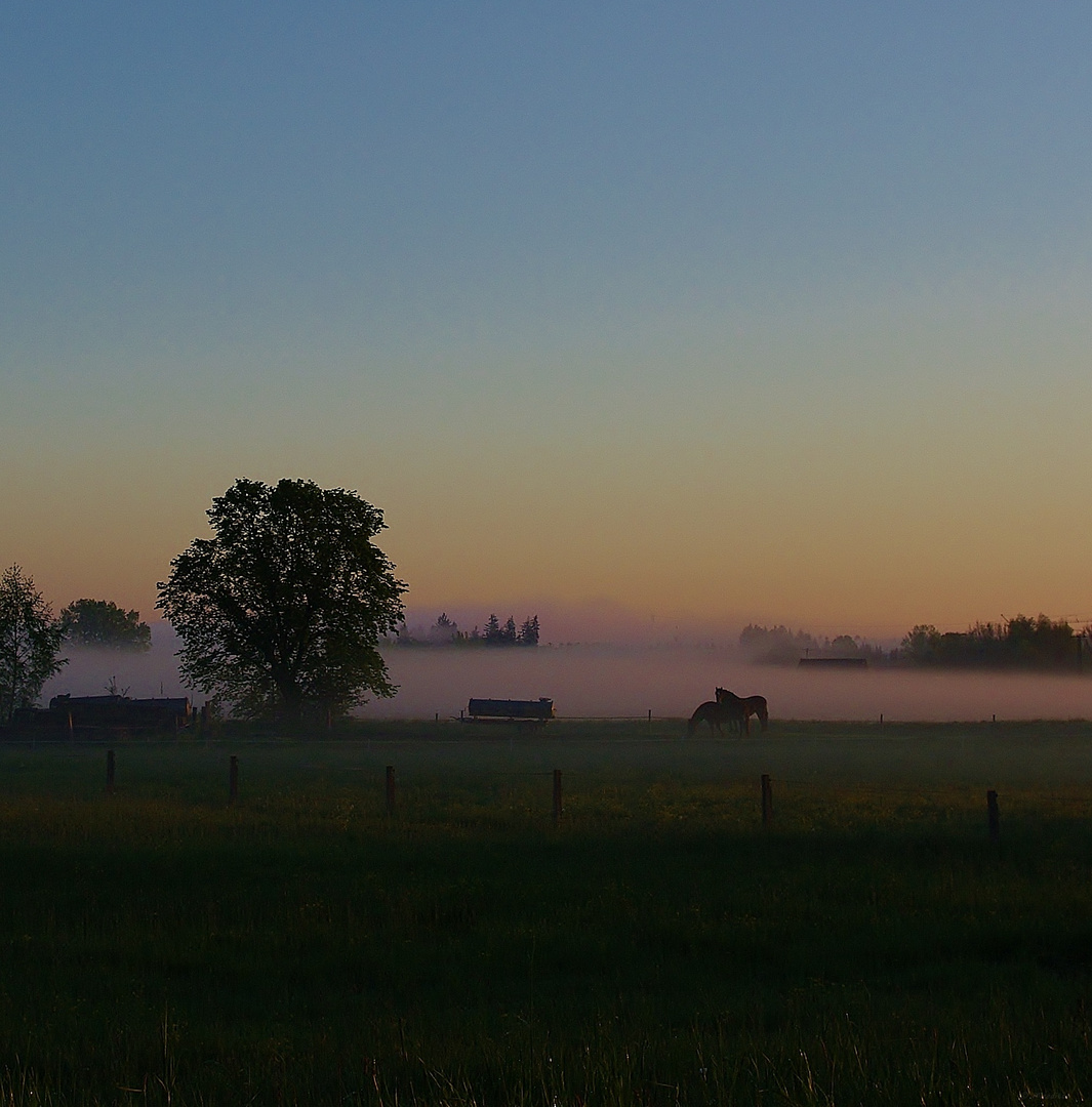 Morgens um halb sechs