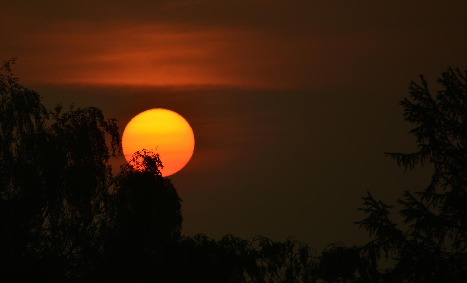 #...Morgens wenn die Sonne aufgeht......#