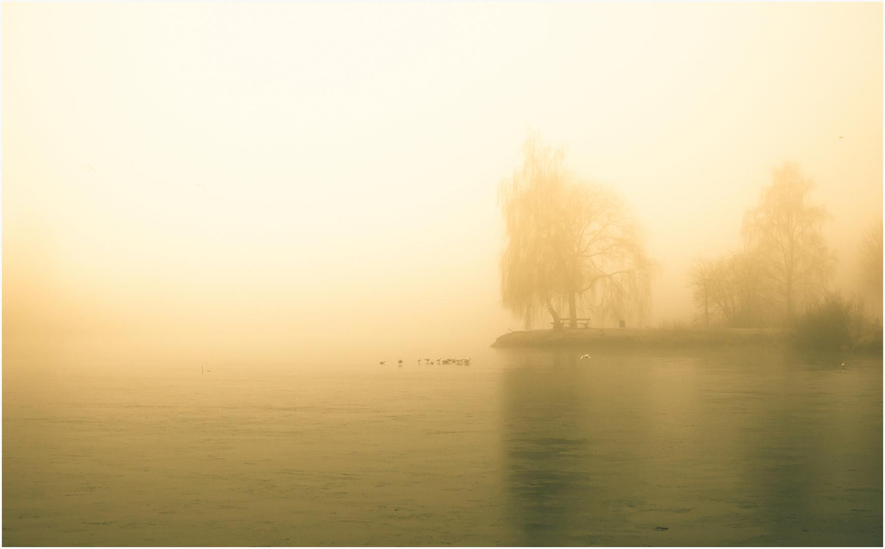 Morgensilhouette